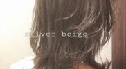 ☆ Silver Beige ☆
